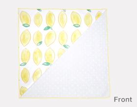 fukeru lemon front